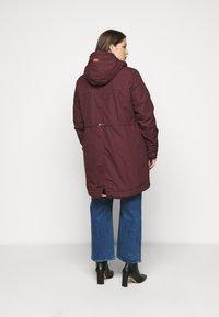 Ragwear Plus - CANNY - Zimní kabát - wine red - 2