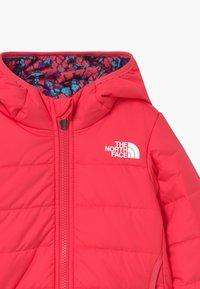 The North Face - REVERSIBLE PERRITO UNISEX - Zimní bunda - paradise pink - 3