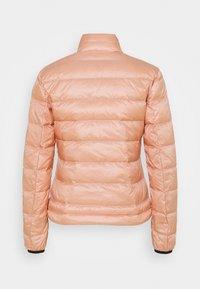 Blauer - GIUBBINI CORTI IMBOTTITO  - Dunjakke - light pink - 1