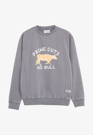 DARWIN - Sweatshirt - middle grey
