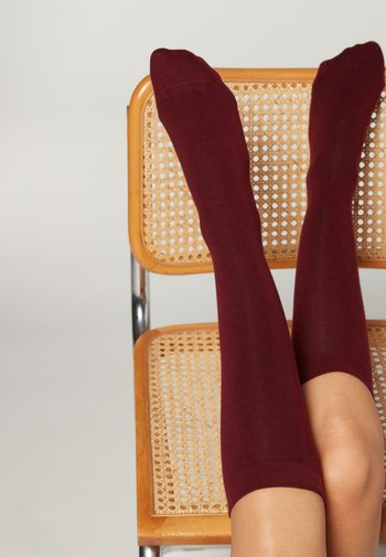 Knee high socks - rabarbaro
