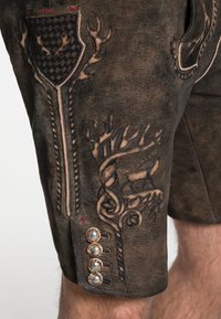 Spieth & Wensky - GOMEZ  - Leather trousers - brown - 2