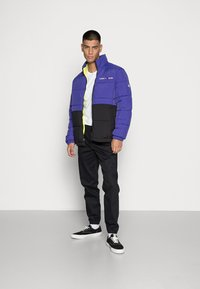 Tommy Jeans - REVERSIBLE PUFFER JACKET - Talvejope - court blue/multi - 1