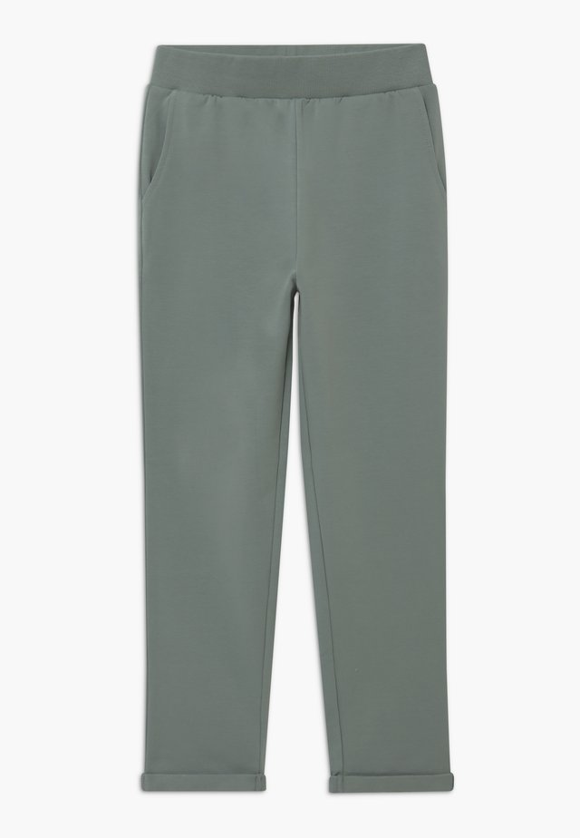 Tracksuit bottoms - lead