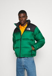 The North Face - 1996 RETRO NUPTSE JACKET - Dunjakke - evergreen - 0
