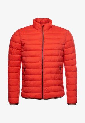 MOUNTAIN PADDED JACKET - Winter jacket - bold orange