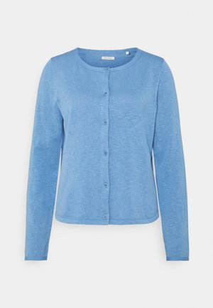 CARDIGAN LONGSLEEVE ASHAPE WITH STRUCTURE DETAILS AND BUTTON - Cardigan - washed cornflower