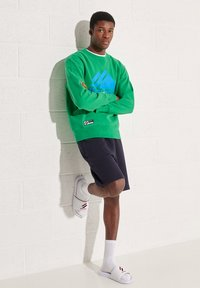 Superdry - MOUNTAIN  - Sweater - bright green - 0