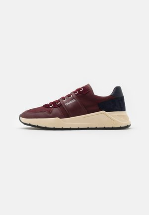 LUCCA - Trainers - burgundy