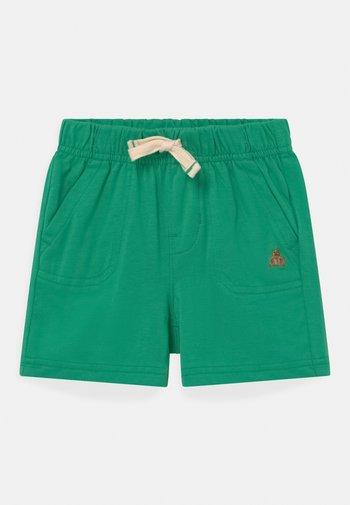 Shorts - parrot green
