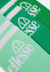 Ellesse - PULLO 3 PACK UNISEX - Ponožky - green - 1