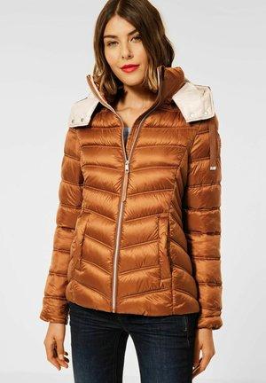 STEPP OPTIK - Winter jacket - braun