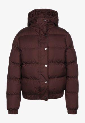 HOODED PUFFER - Winter jacket - cherry