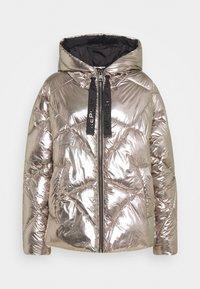 Replay - OUTERWEAR - Winter jacket - dark silver - 0