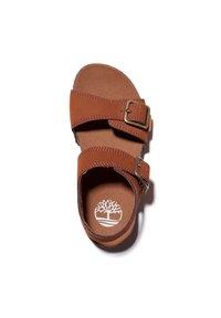 Timberland - CASTLE ISLAND - Walking sandals - saddle - 1