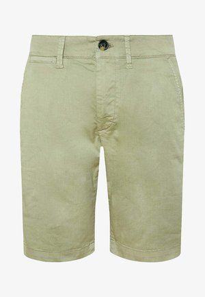 Shorts - palm green