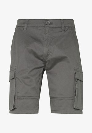 ONSCAM STAGE - Shorts - grey
