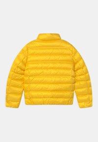 Blauer - GIUBBINI CORTI - Bunda zprachového peří - yellow - 1