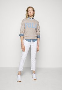 Polo Ralph Lauren - CLASSIC LONG SLEEVE - Pullover - multi - 1