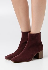 Zign - Ankle boots - bordeaux - 0
