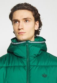 adidas Originals - HOODED PUFF - Veste d'hiver - green - 5
