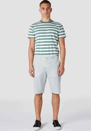 Shorts - pear green fine stripe