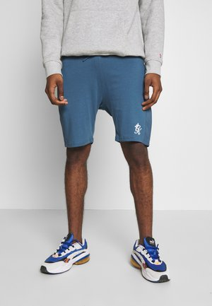 SHORTS WITH PANEL OVERLAY - Träningsbyxor - bearing sea