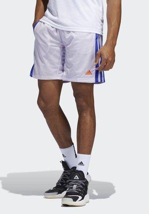 SUMMER BASKETBALL PRIMEGREEN SHORTS - Pantaloncini sportivi - purple tint
