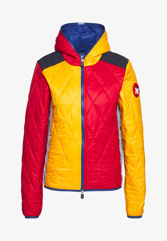 SAVE THE DUCK - Winter jacket - multi