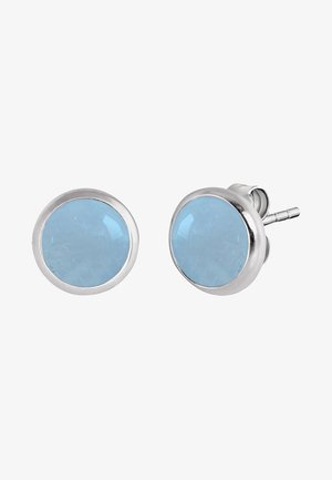 Earrings - blue