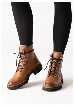 Lace-up ankle boots - cognac-braun