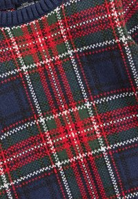 Next - TARTAN  - Jumper - blue - 2