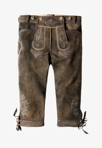 Stockerpoint - JUSTIN - Leather trousers - bison - 7