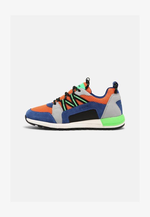 ALBEN BOY - Sneakers laag - royal/orange