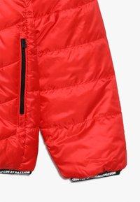 Vingino - TOINE - Winter jacket - classic red - 3