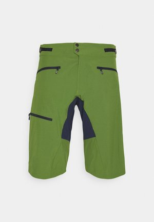 FJØRÅ FLEX1 MID WEIGHT SHORTS - Sports shorts - treetop/indigo night