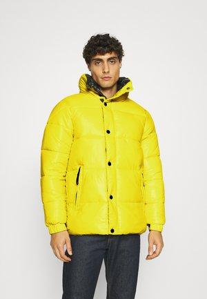 WEBSTER - Zimní bunda - lemon pie