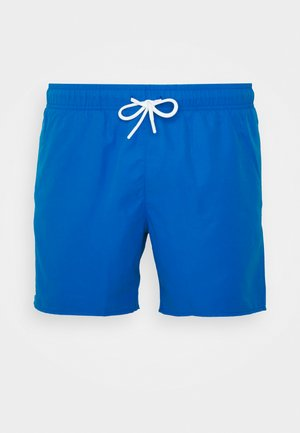 Badeshorts - nattier blue/green