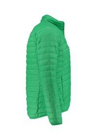 Meru - COLLINGWOOD - Winter jacket - grün (400) - 3