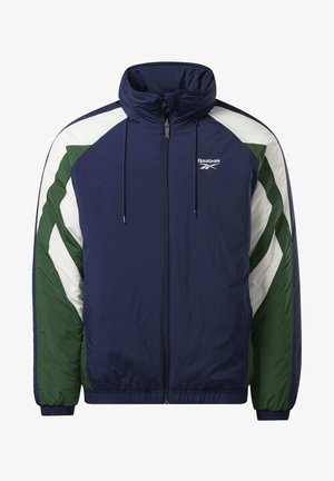 PUFF JACKET - Winter jacket - vector navy