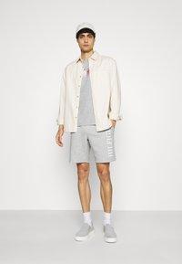 Tommy Hilfiger - Shorts - grey - 1