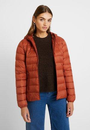 IBICO JACKET ZIP - Down jacket - dark copper