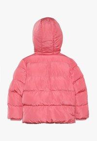 Friboo - Winter jacket - pink - 1