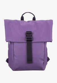 patrician purple