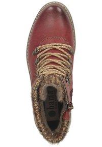 Bama - Ankle boots - bordeauxrot 51 - 1