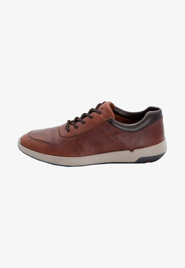 ARGOS - Trainers - brown
