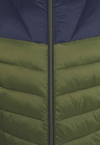 Napapijri - AERONS - Winter jacket - green depths - 6