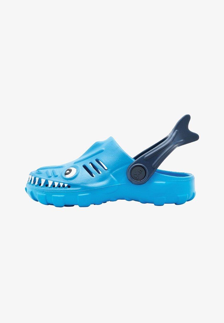 Next - Pool slides - blue