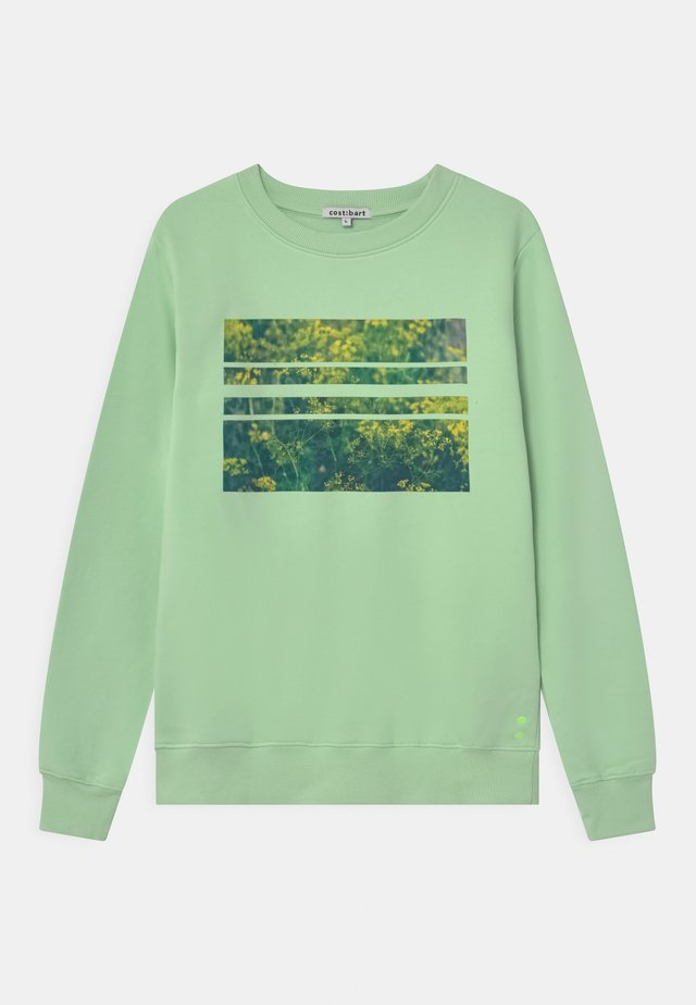 MONRAD  - Sweater - pastel green