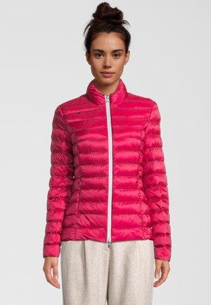 HELSINKI - Winter jacket - berry/cookie